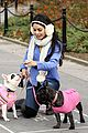 vanessa hudgens dog walking 04