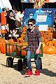 mason cook pumpkin picker 09