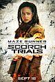 scorch trials new trailer watch here 02