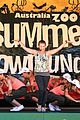 bindi irwin kicks off summer down under aus zoo 04