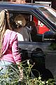 miley cyrus liam hemsworth vote from their car 13