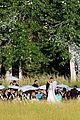 julianne houghs wedding photos brooks laich 06