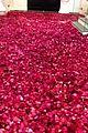 kylie jenner travis scott house covered in roses 04