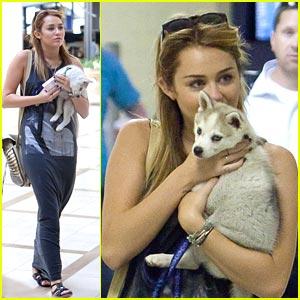 Miley Cyrus & Floyd Take Flight