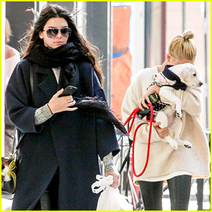 Kendall Jenner Says Who Needs Boys When There Are Puppies!