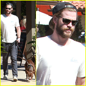 Liam Hemsworth Grabs Lunch With His Dog After 'Independence Day 2' Casting News