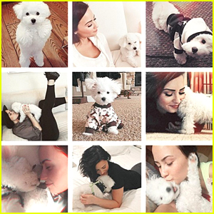 Demi Lovato Sends Love & Thanks To Fans After Pup Buddy's Passing