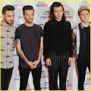 One Direction Not Permanently Splitting Up