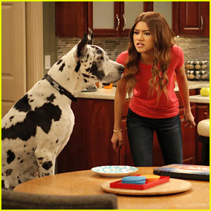 K.C. Does Not Get Along With Her Canine Partner in 'K.C. Undercover'