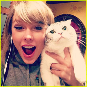 Taylor Swift Shares Funny Video of Her Cat Olivia on Instagram Stories