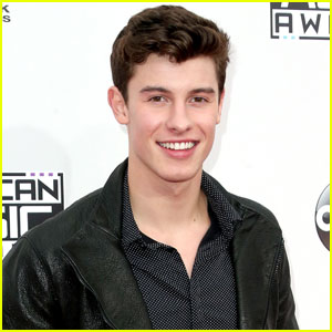 Shawn Mendes Definitely Has A Doppelganger!