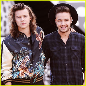 Liam Payne Tweets Harry Styles About 'Sign of the Times' & Directioners Are Shook