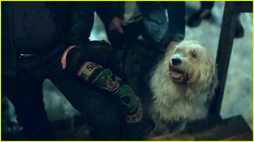 Jughead S Dog Hot Dog