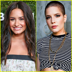 Demi Lovato May Have Just Subtweeted Halsey