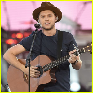 Niall Horan Says Collaborating With the One Direction Guys Would Be 'A Bit Weird'