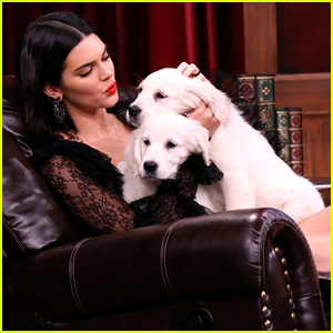 Kendall Jenner Cuddles With Puppies on 'Tonight Show' (Video)