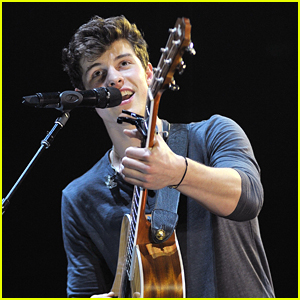 Shawn Mendes Serenades All His Fans With Swoon-Worthy Instagram Video