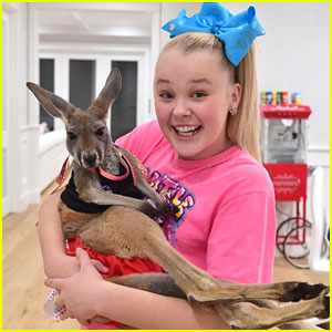 JoJo Siwa Receives Her 2017 KCA Trophy & Hangs Out With a Baby Kangaroo!