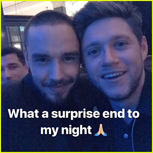 Liam Payne Reunites With Niall Horan at BRITs After Party