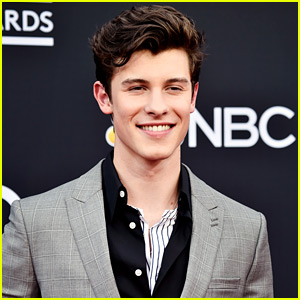 Shawn Mendes' New Music Doesn't Include Pronouns