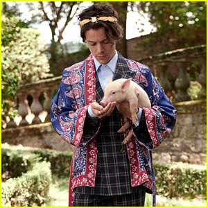 Harry Styles Takes Pics With Cute Animals for Gucci's Cruise 2019 Campaign!