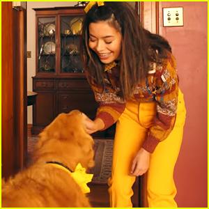 Miranda Cosgrove Bonds With Adorable Golden Retriever In Marshmellos Happier Music Video