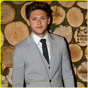 Niall Horan Slams Donald Trump Over Pittsburgh Synagogue Shooting Comments
