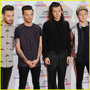 Liam Payne Says One Direction Might Have a Holiday Reunion!