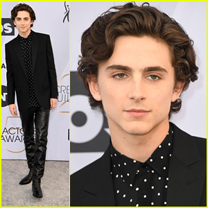 Timothee Chalamet Wears Leather Pants To SAG Awards 2019