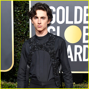 Timothee Chalamet Slays in Sparkly Harness at Golden Globes 2019