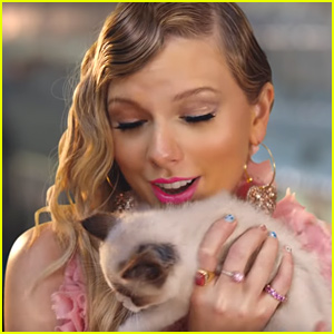 Fans Think Taylor Swift Got a New Cat After 'Me!' Music Video!