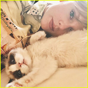 Taylor Swift Shares Her New Cat's Adorable Name!