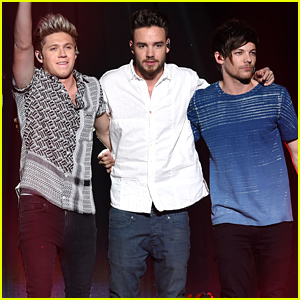Niall Horan, Liam Payne & Louis Tomlinson All Celebrate One Direction's 9th Anniversary
