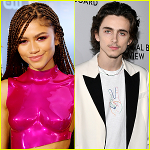 Zendaya & Timothee Chalamet Spotted Shopping Together at Bed Bath & Beyond