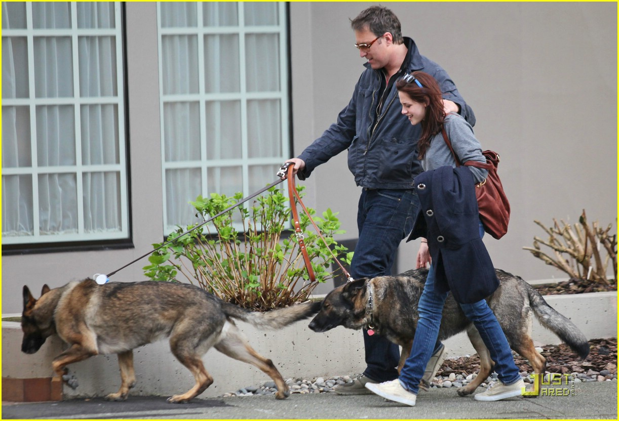 kristen stewart canine cute 04