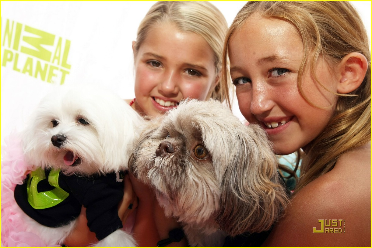noah cyrus pet salon sweet 03