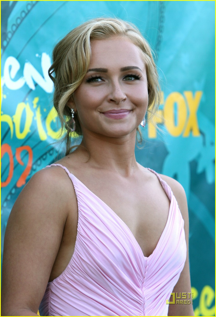 hayden panettiere tca awards 15