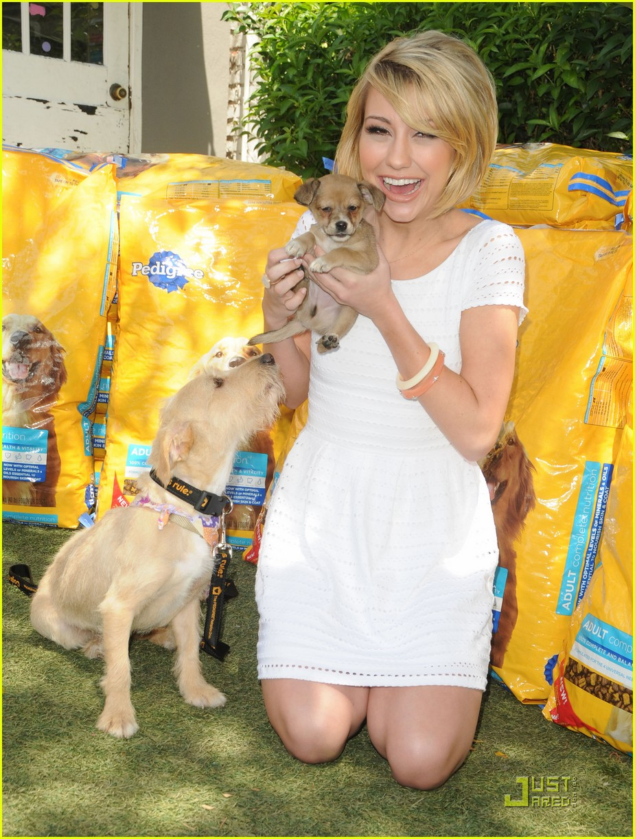 chelsea kane puppy pedigree 10
