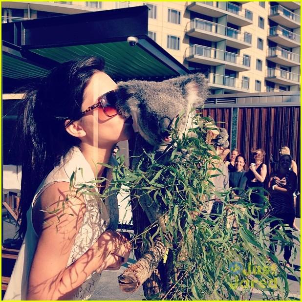 kendall jenner koala kisses 03