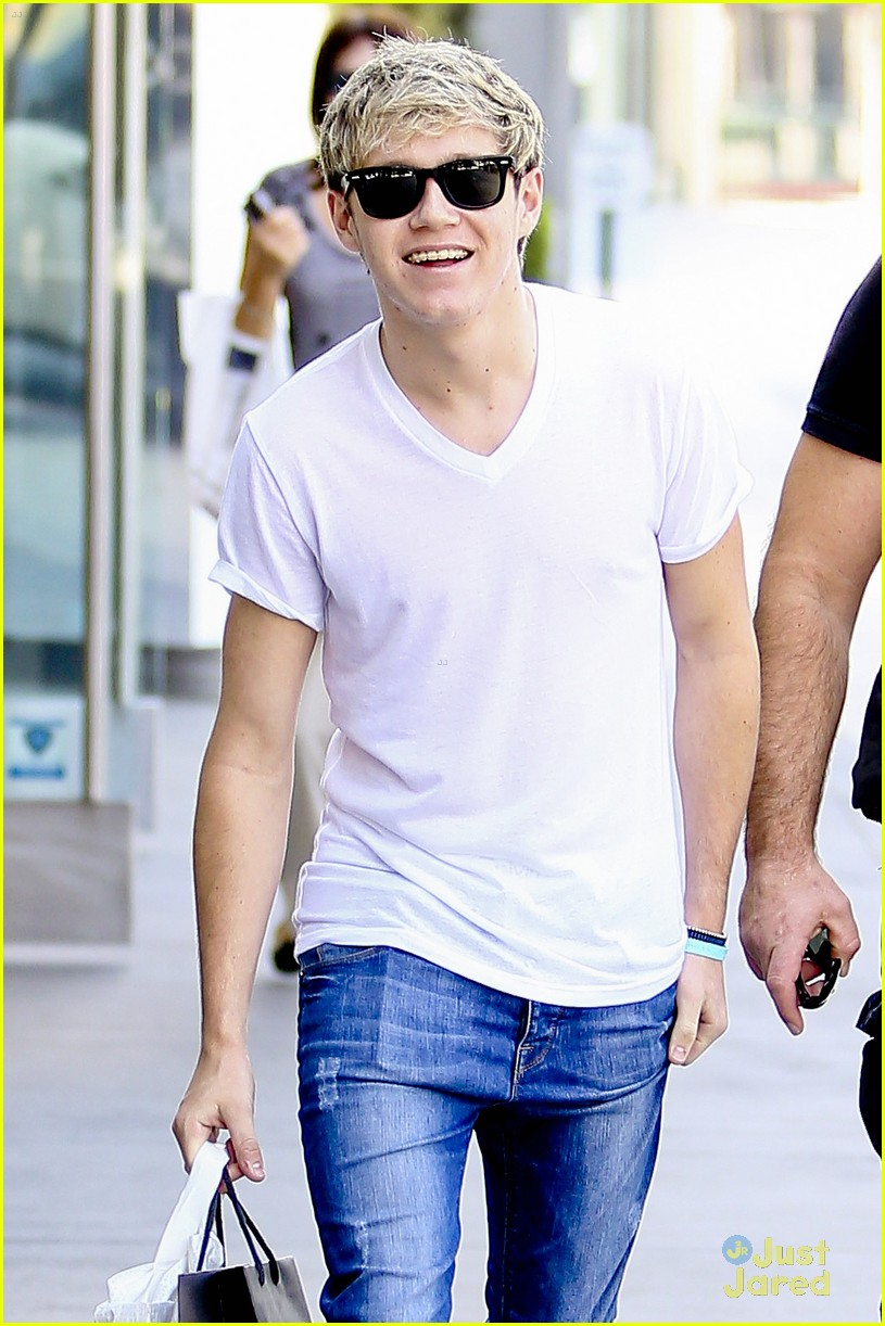 niall horan hm shopper 13