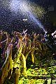 Lovato-gay demi lovato london gay performance 15