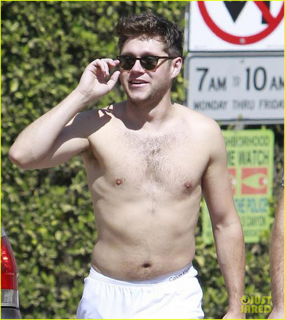 Niall Horan Gets Sweaty During Shirtless Hike! | Photo ...